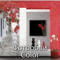 Фотообои Color