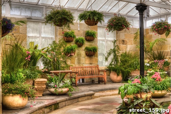 Street 159 for Garden house grand designs