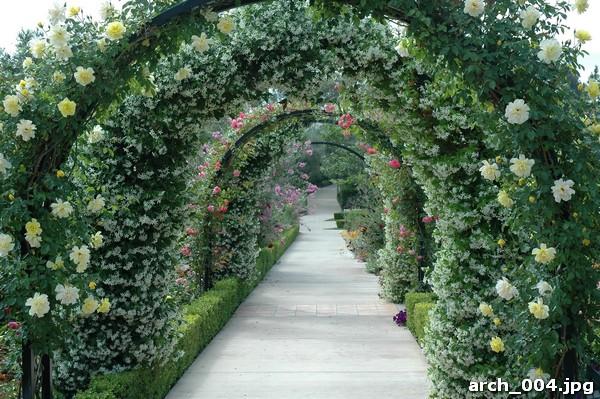 фотообои арка: